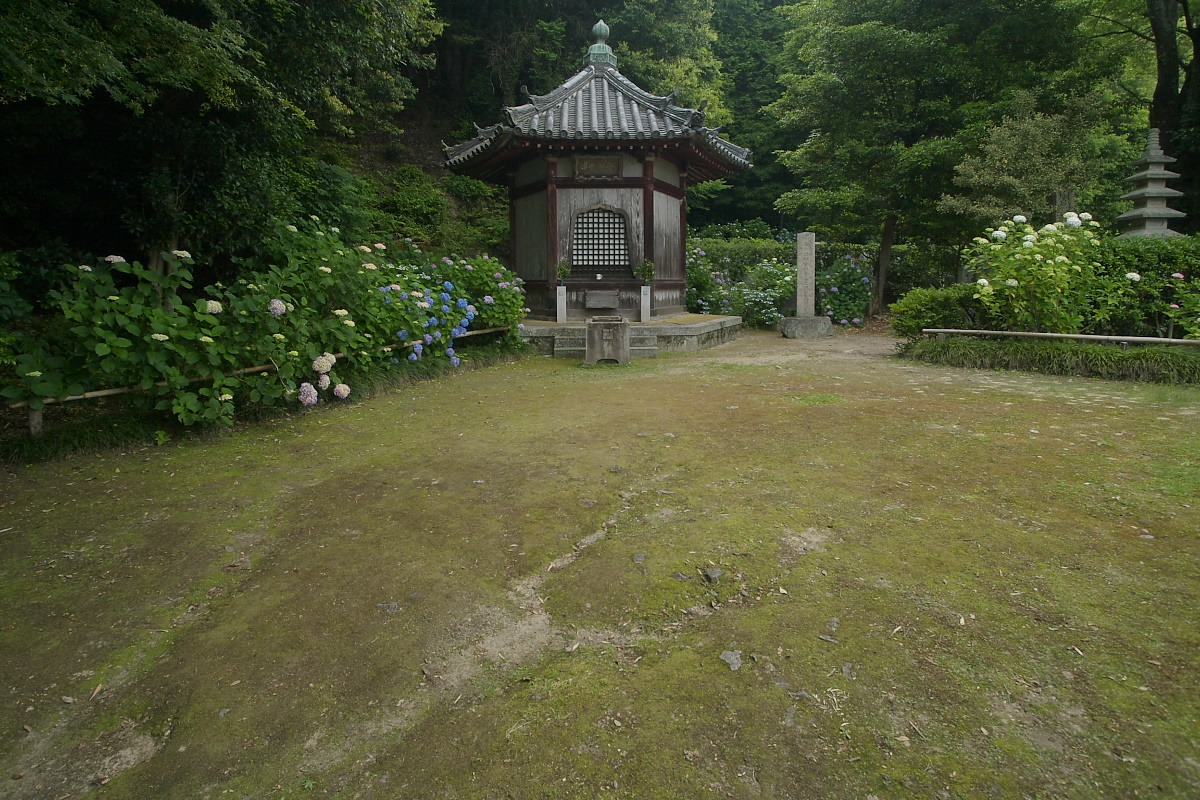 奈良 矢田寺 <紫陽花> 9_f0021869_9264492.jpg
