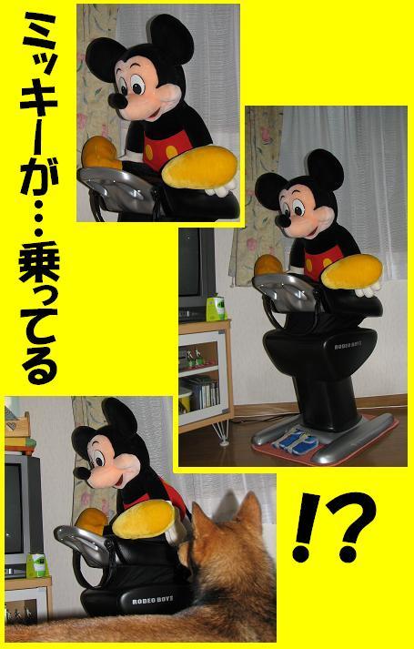 d0032004_20124197.jpg