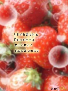 e0121704_0521034.jpg