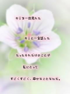 e0121704_0553248.jpg