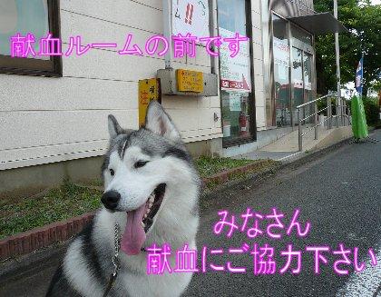 f0112407_15273157.jpg