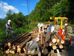 6月の土佐の森・救援隊定例会_e0002820_18202672.jpg