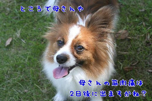 d0013149_23201693.jpg