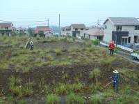 草刈り事業 in 望海坂_c0108460_15431197.jpg