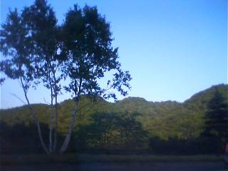 駒ヶ岳_b0106766_1355323.jpg