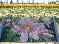 f0103873_623743.jpg