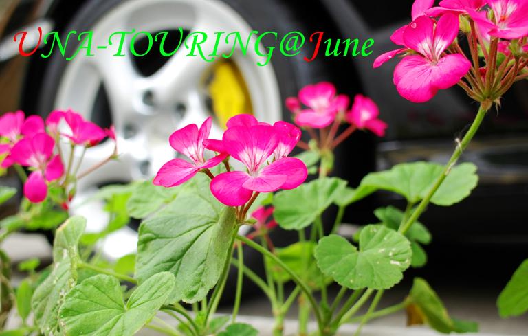f0127081_1450796.jpg