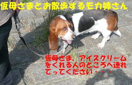 f0121712_111348.jpg