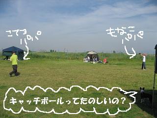 e0126046_0522519.jpg