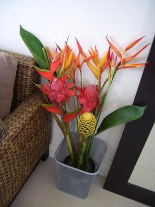 ホテルの部屋に花を飾る_a0098948_1356011.jpg