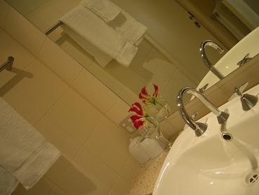 ホテルの部屋に花を飾る_a0098948_1415989.jpg