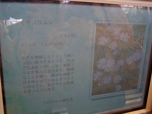 b0067012_023431.jpg