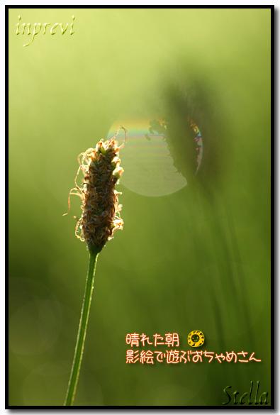 d0015026_1701420.jpg