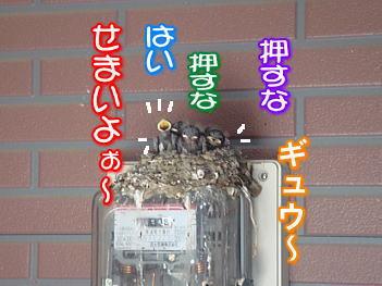 f0011845_16592561.jpg