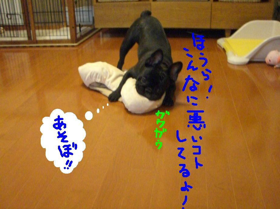 c0113109_037359.jpg