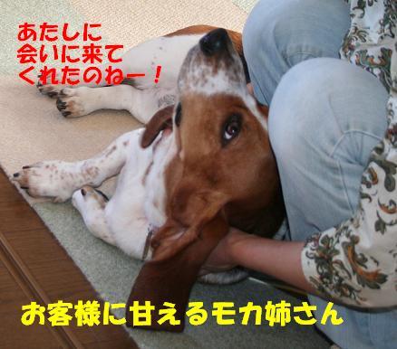 f0121712_16114859.jpg