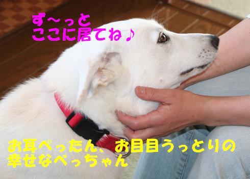 f0121712_16121059.jpg