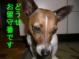 c0113146_13492625.jpg