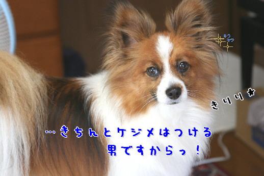 d0013149_0502633.jpg