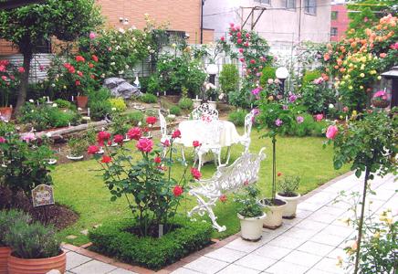 Photo 名古屋のお庭_a0094959_1243675.jpg