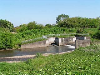 厚別大谷地東の「釣橋」_f0078286_21333844.jpg