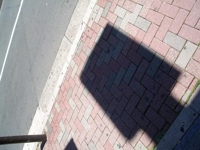d0026694_230563.jpg
