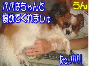 f0011845_21254955.jpg