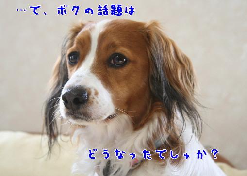 d0013149_1351344.jpg