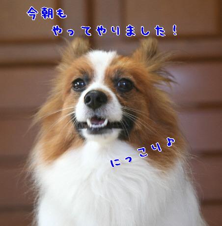 d0013149_16645.jpg