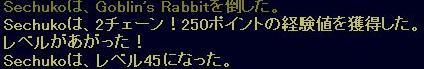 f0105408_1083420.jpg