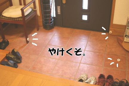 d0013149_149685.jpg
