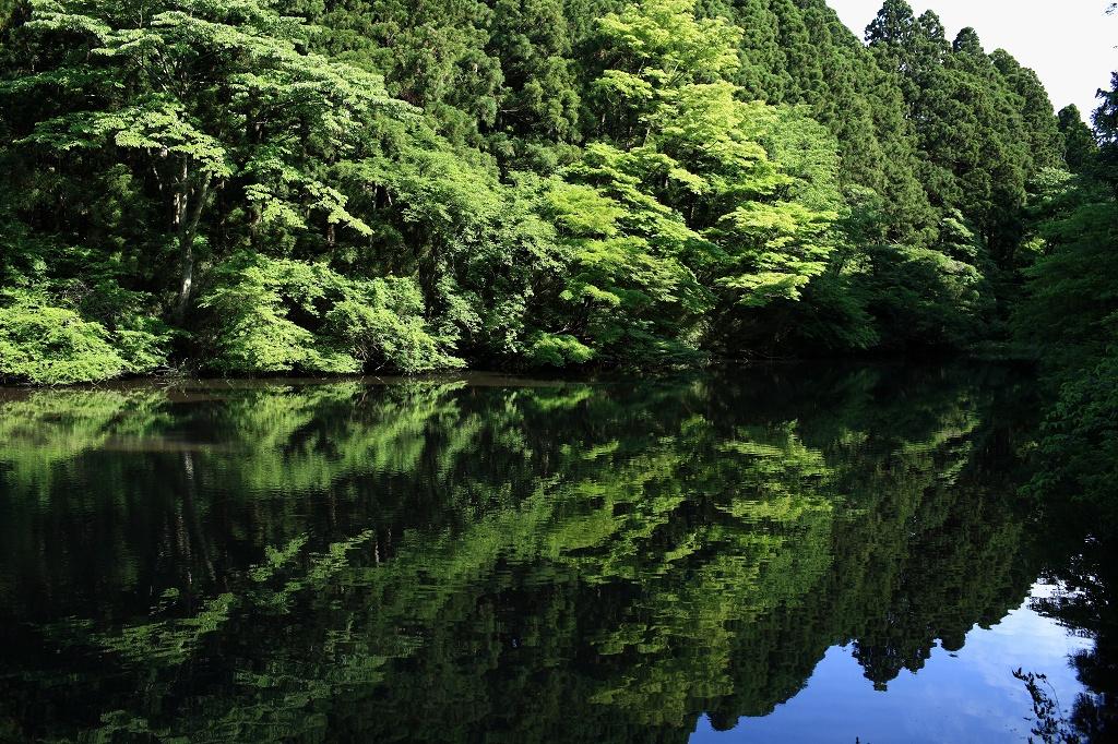Hakone(番外編)_e0001789_014741.jpg