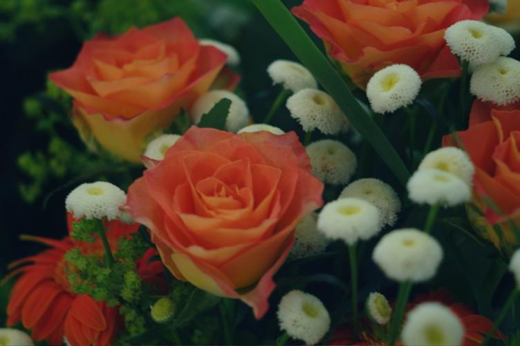 flowers_f0042194_15332092.jpg