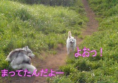 f0112407_2215419.jpg