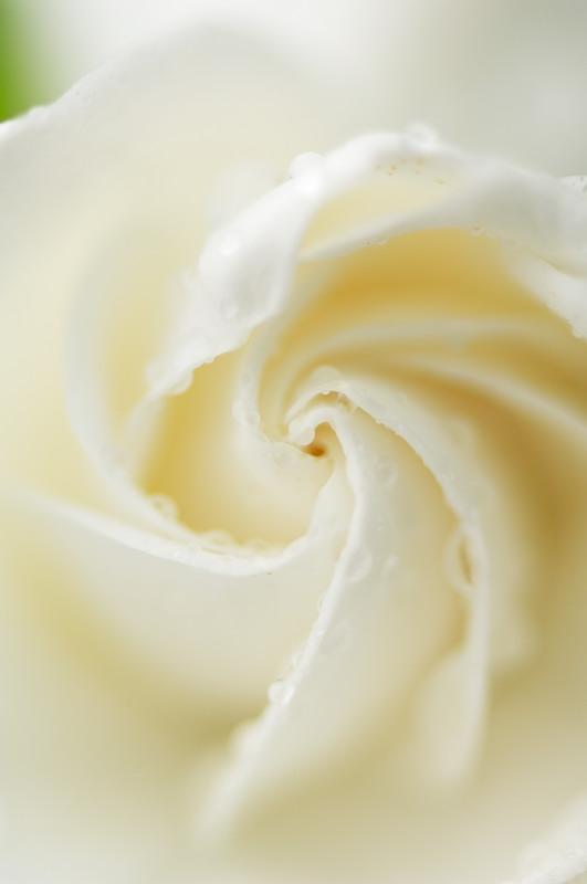 雨の日・甘い香りに誘われて♪_f0032011_20303956.jpg