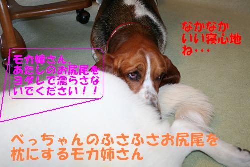 f0121712_1210252.jpg