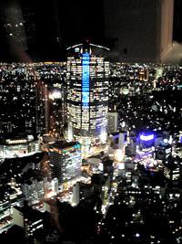 ザ・リッツ・カールトン東京/4_b0035734_1815385.jpg