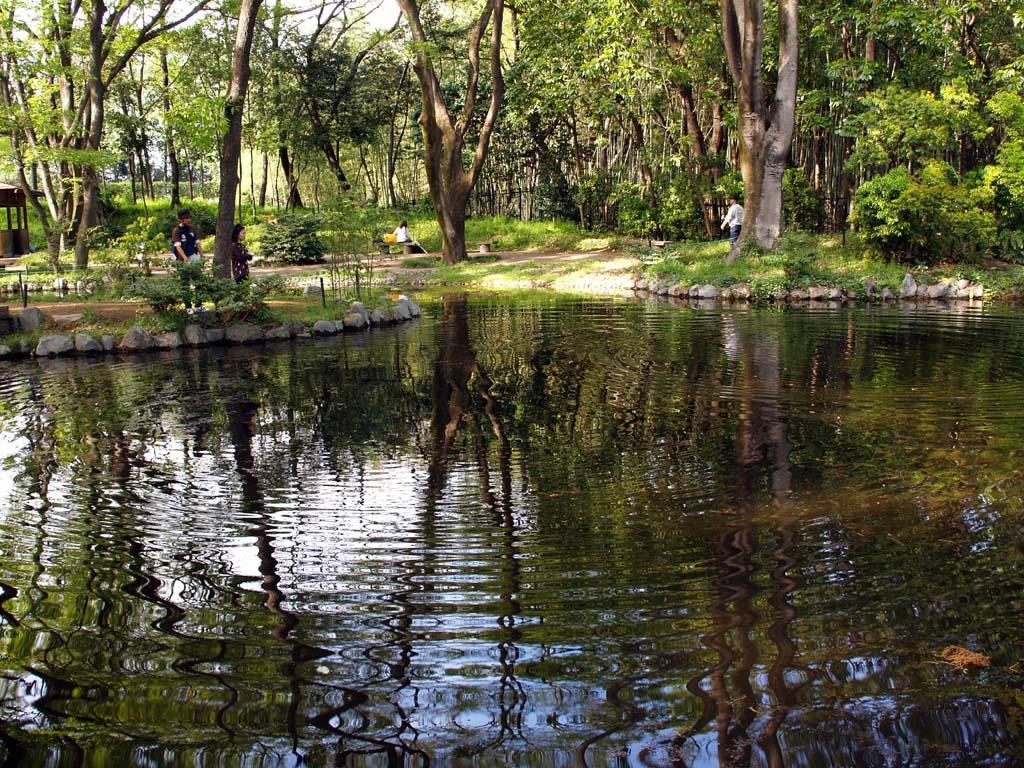 新緑の嬉しい季節になりました。 群馬の森にて_e0127034_10394529.jpg