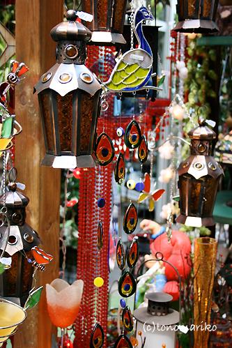シテ島のミニ植物園_c0024345_1795051.jpg