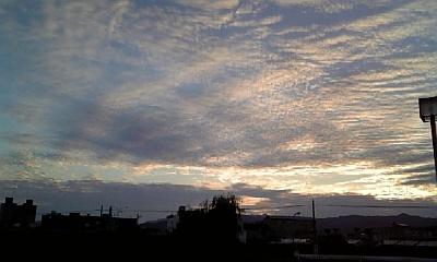 昨日は晴れ! きょうは雨。。。_c0049950_16332039.jpg