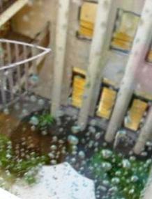 「雨に濡れても」_d0037159_917071.jpg