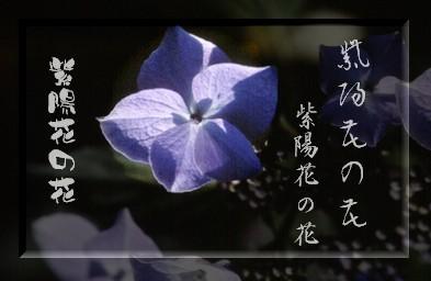 b0078675_10364596.jpg
