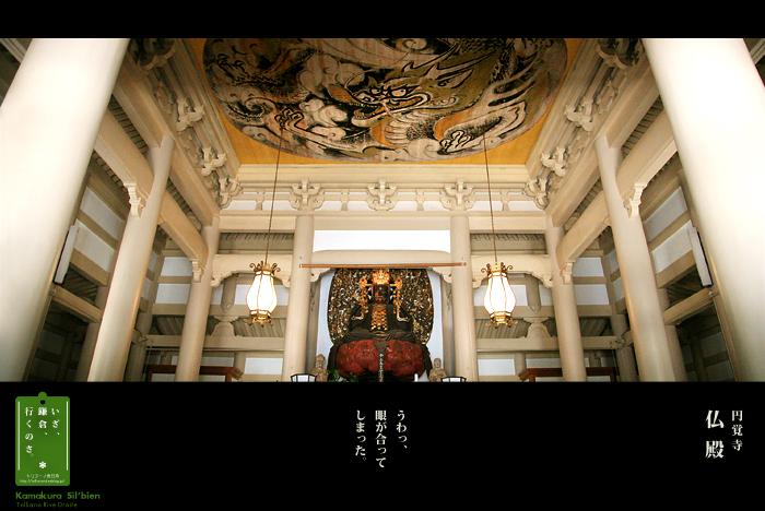 鎌倉シルビアン 12     円覚寺 仏殿_f0038408_2274567.jpg
