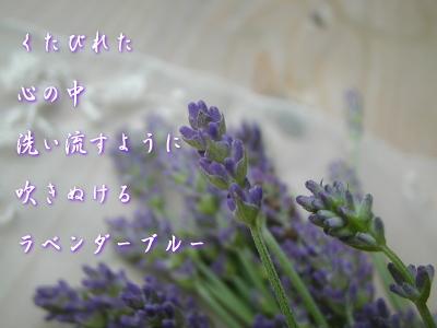 c0095663_8431345.jpg