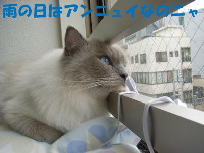 f0014893_133015100.jpg