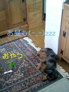 f0139405_23151684.jpg