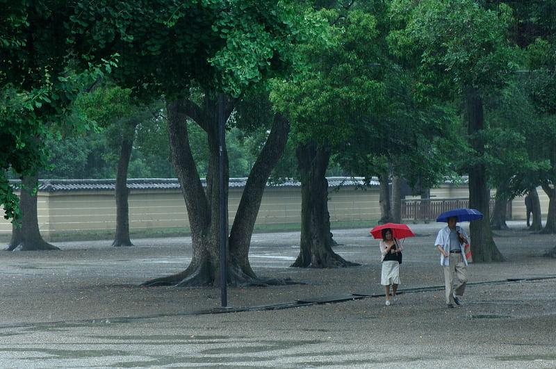 雨の日街角・其の二 東寺_f0032011_1957932.jpg