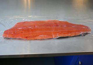鮭袋詰め作業_a0088116_29841.jpg