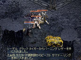 f0101117_20484546.jpg