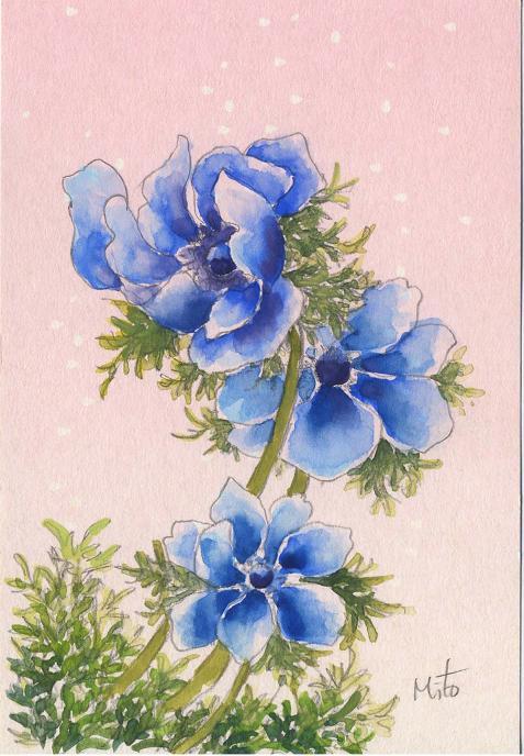 青いアネモネ 水彩画_b0089338_10112236.jpg